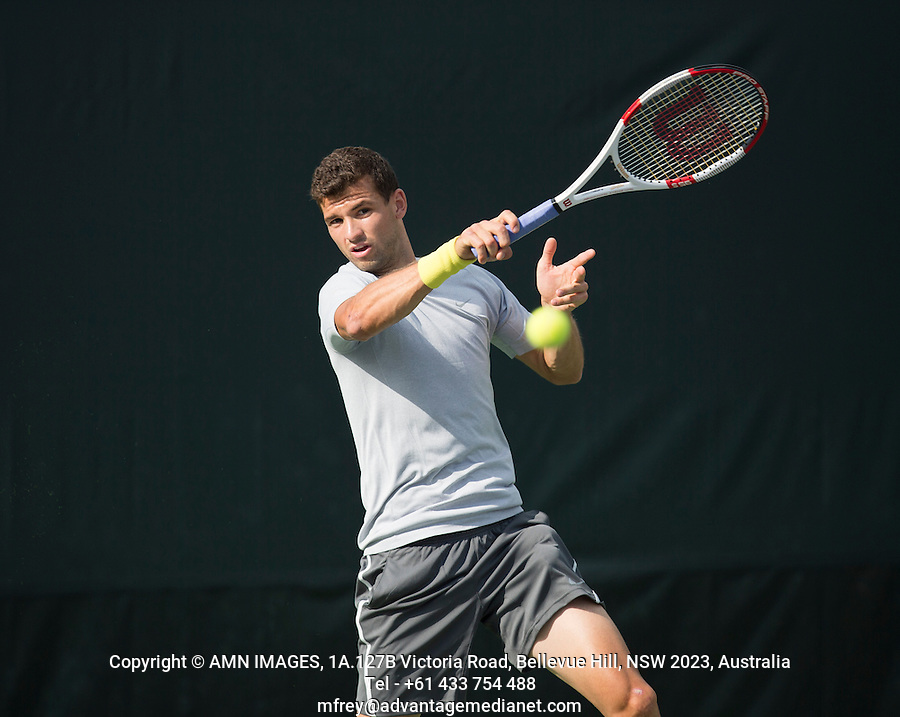 GRIGOR DIMITROV (BUL)<br /> Tennis - Sony Open - ATP-WTA -  Miami -  2014  - USA  -  17 March 2014. <br /> &copy; AMN IMAGES