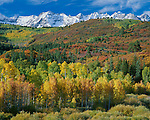 Uncompahgre National Forest, CO<br /> San Juan Range and brilliant fall colored foothills of the East Dallas Creek valley