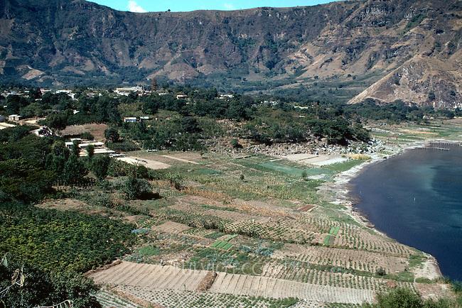 Guatemala, Atitlan, enviroment, coffee, coffea, plantation, lake, landscape, aerial