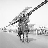 Policier ˆ cheval ˆ lÕExpo 67, 1967<br /> <br /> En arrire plan, le pavillon de lÕURSS et le Minirail.<br /> Photographie par RhŽal Benny.