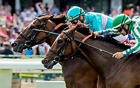 OCEANPORT, NJ - JULY 29: Elysea's World, #7, ridden by Jose Ortiz, wins the WinStar Matchmaker Stakes on Haskell Invitational Day at Monmouth Park Race Course on July 29, 2018 in Oceanport, New Jersey. (Photo by Scott Serio/Eclipse Sportswire/Getty Images)
