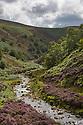 River Derwent above Howden Reservoir at Oaken Bank. Peak District National Park, Derbyshire, UK. August.