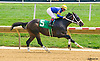 Spanish Prospector winning at Delaware Park on 8/10/16