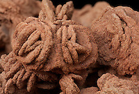 """Barite roses, also known as desert roses. The rose-like appearance of these concretions is due to the intergrowth of crystals of barite. Pure barite is clear but when formed in groundwater in sandstone, it often takes on the color and texture of the surrounding sediment as these """"roses"""" did from the Permian Garber Sandstone Formation found southeast of Norman, Oklahoma. Barite roses are the state rock of Oklahoma."""