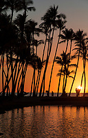 People and palm trees are silhouetted by sunset at 'Anaeho'omalu Bay, with Ku'uali'i Fishpond in the foreground, Big Island of Hawai'i.