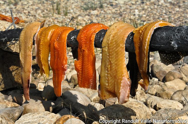 Fileter av lake trout. ---- Lake trout filets.