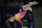 British Gymnastics Championships 2017