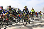 The peloton including Chris Juul Jensen (IRL/DEN) Orica-Scott pass through Mater during the 60th edition of the Record Bank E3 Harelbeke 2017, Flanders, Belgium. 24th March 2017.<br /> Picture: Eoin Clarke | Cyclefile<br /> <br /> <br /> All photos usage must carry mandatory copyright credit (&copy; Cyclefile | Eoin Clarke)