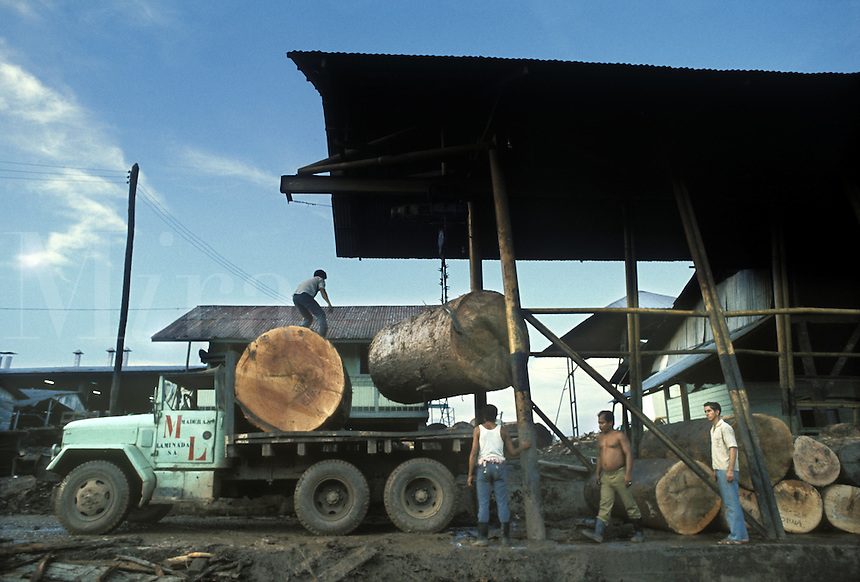 Logs being unloaded from truck at sawmill in Pucallpa on Ucayali River, Peru.