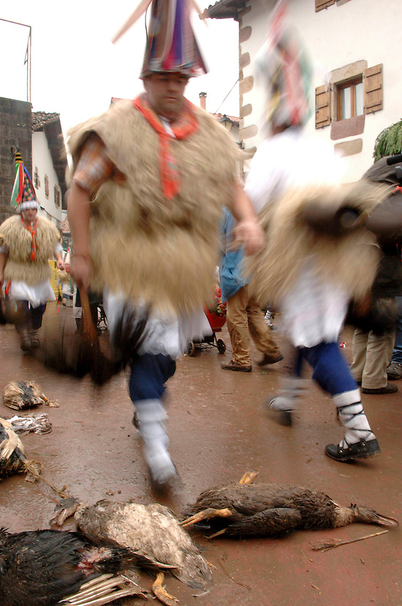 ZUBIETA, NAVARRE - JANUARY 31: A group of 'Zanpantzar', people dressed in sheep fur and big cowbells tied to their back, pass over died drakes in Zubieta village during an ancient traditional carnival on January 31, 2006. Zanpantzar´s march trough Zubieta farmhouses and streets sounding their cowbells to wake up the earth for a good new farmer year and keep far away all bad spirits . Photo by Ander Gillenea