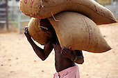 Kigoma, Tanzania; young boy dock worker carrying two large sacks.