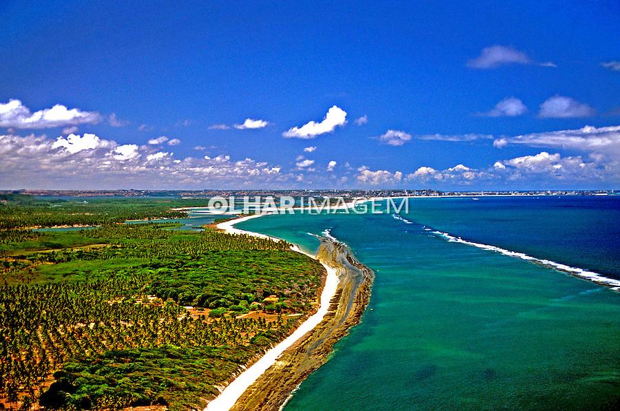 Aérea da Praia do Frances em Alagoas. 2000. Foto de Stefan Kolumban.