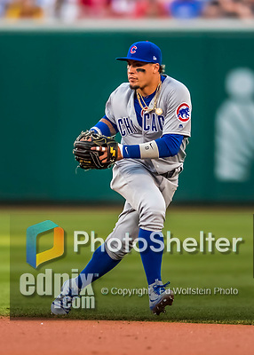 7 October 2017: Chicago Cubs second baseman Javier Baez in action during the second inning against the Washington Nationals at Nationals Park in Washington, DC. The Nationals defeated the Cubs 6-3 and even their best of five Postseason series at one game apiece. Mandatory Credit: Ed Wolfstein Photo *** RAW (NEF) Image File Available ***
