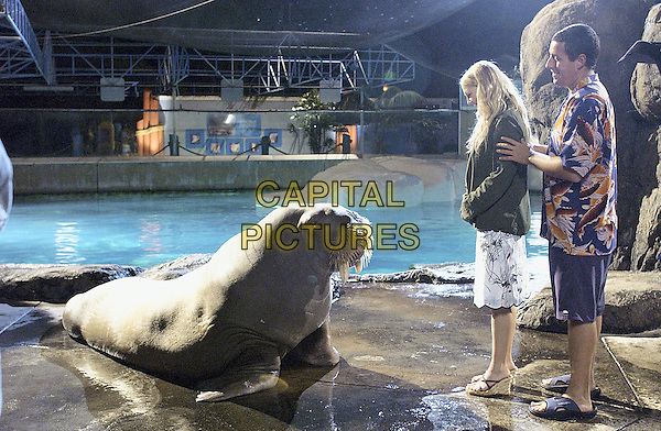 DREW BARRYMORE & ADAM SANDLER.in 50 First Dates.*Filmstill - Editorial Use Only*.CAP/NFS.Supplied by Capital Pictures.