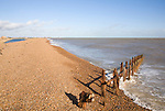 Old broken and abandoned wooden groynes on shingle beach, Bawdsey, Suffolk, England