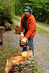 Chainsawing large piece of hemlock.
