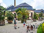 Deptak w Parku Zdrojowym w centrum Kudowy-Zdrój, Polska<br /> Promenade in the Spa Park in the centre of Kudowa-Zdrój, Poland
