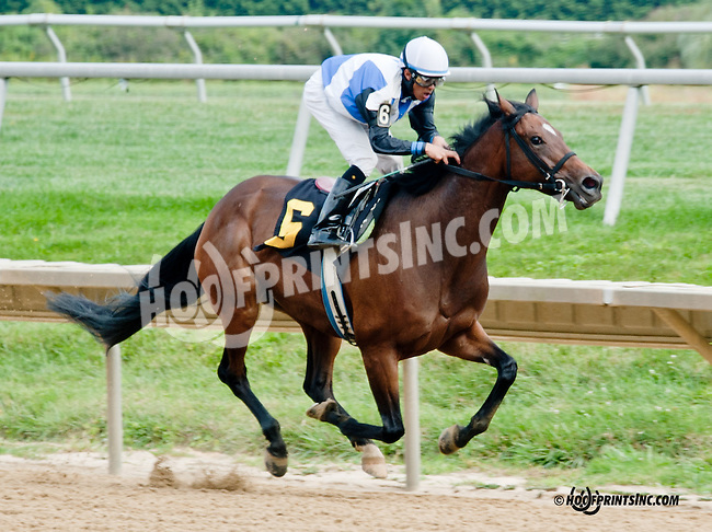 Mine Only Mine winning at Delaware Park on 9/21/13 earning Darci Rice her 1st training win!  <br /> How Nice!