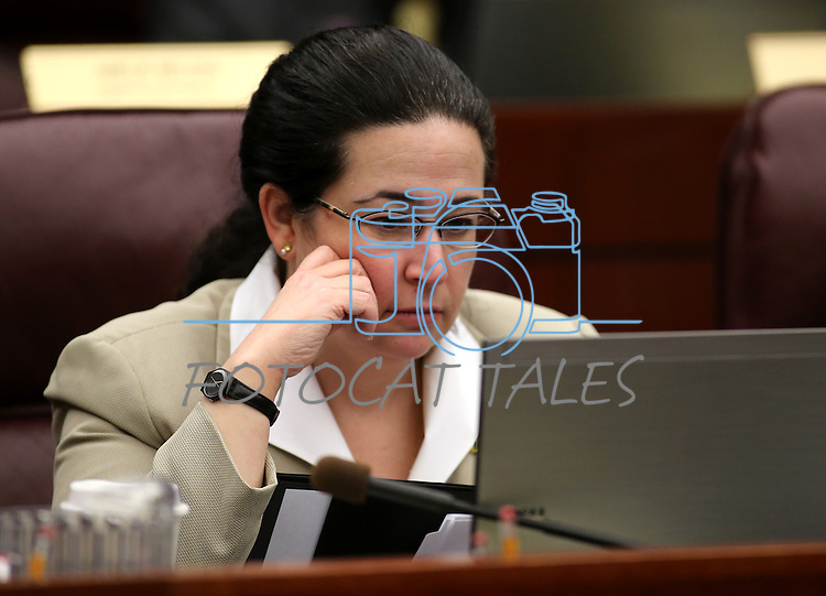 Nevada Assemblywoman Lesley Cohen, D-Henderson, works in committee at the Legislative Building in Carson City, Nev., on Thursday, April 11, 2013. .Photo by Cathleen Allison