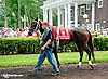 Alli Leigh before The Delaware Oaks (gr 2) at Delaware Park on 7/13/13