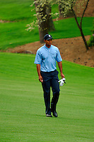 Masters Golf Tournament 2005, Augusta National Georgia, USA. Tiger Woods walking up the 13th hole, Azalea.<br /> <br /> Champion 2005 - Tiger Woods <br /> <br /> Note: There is no property release or model release available for this image.