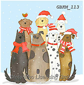 Kate, CHRISTMAS ANIMALS, WEIHNACHTEN TIERE, NAVIDAD ANIMALES, paintings+++++Christmas Dog and cat gangs 1,GBKM113,#xa# ,dog,dogs ,cat,cats