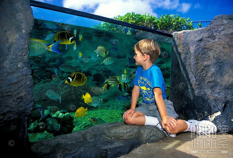 "Children like to explore the """"Edge of the Reef"""" tank at the Waikiki Aquarium, Oahu."