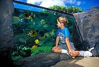 "Children like to explore the """"Edge of the Reef"""" tank at the Waikiki Aquarium, Oahu."