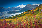 Fall Colors - Wrangell-St.Elias NP