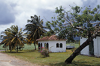 France/DOM/Martinique/Env. Le Lamentin: Rue Cases Nègres