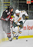 27 January 2012: University of Vermont Catamount forward Sebastian Stalberg, a Junior from Gothenburg, Sweden works against he boards during a game against the Northeastern University Huskies at Gutterson Fieldhouse in Burlington, Vermont. The Catamounts fell to the Huskies 8-3 in the first game of their 2-game Hockey East weekend series. Mandatory Credit: Ed Wolfstein Photo