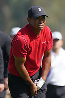 Tiger Woods (USA) In action during the final round of the The Genesis Invitational, Riviera Country Club, Pacific Palisades, Los Angeles, USA. 15/02/2020<br /> Picture: Golffile | Phil Inglis<br /> <br /> <br /> All photo usage must carry mandatory copyright credit (© Golffile | Phil Inglis)