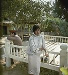 Верните бабушку (1985)