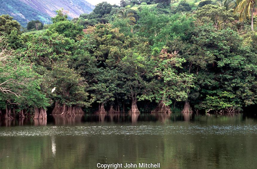 Charco Verde Lagoon in the Charco Verde Reserve, Isla de Ometepe, Nicaragua