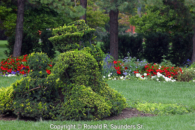 """A re-creation in sculpted shrubbery of French artist Georges Seurat's famous painting, """"A Sunday Afternoon on the Ile De La Grande.""""<br /> <br /> The topiary garden begun in 1989 by the Columbus Recreation and Parks Department, is a recreation in sculpted shrubbery of French artist Georges Seurat's famous painting, """"A Sunday Afternoon on the Ile de Grande Jatte"""" (1884-6). The topiary project was conceived, designed and executed by Columbus sculptor James T. Mason<br /> (1)"""