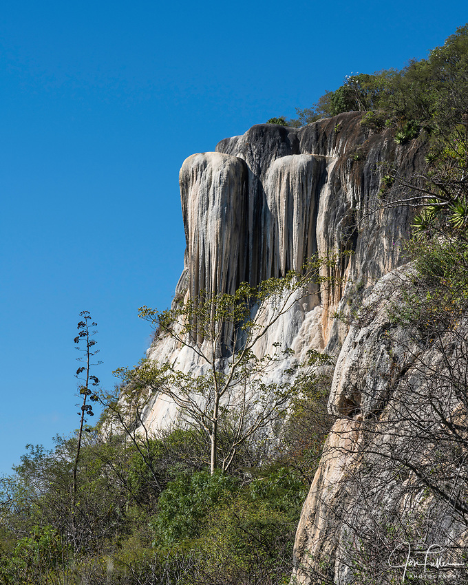 An agave flower spike in front of the stalactities at Cascada Grande or the Big Waterfall mineral formation at Hierve el Agua, near Mitla, Mexico.