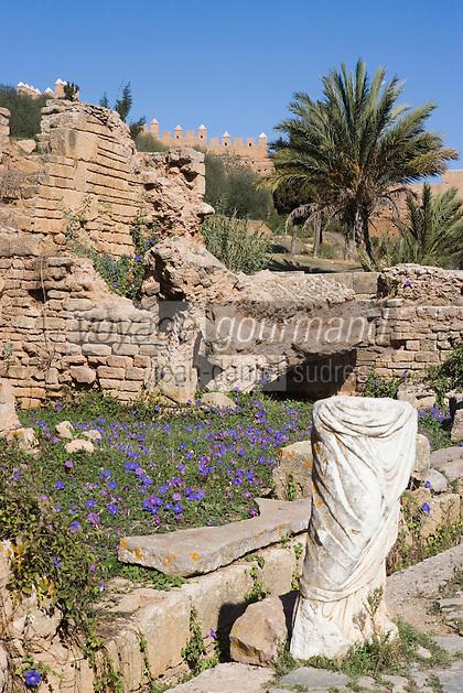 Afrique/Afrique du Nord/Maroc/Rabat: Chellah - Ruines romaines