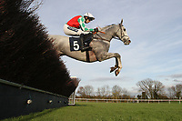 Race winner Elenika ridden by Ruby Walsh in jumping action during the Tom Jones Memorial HTJ Centre Ltd Beginners Chase
