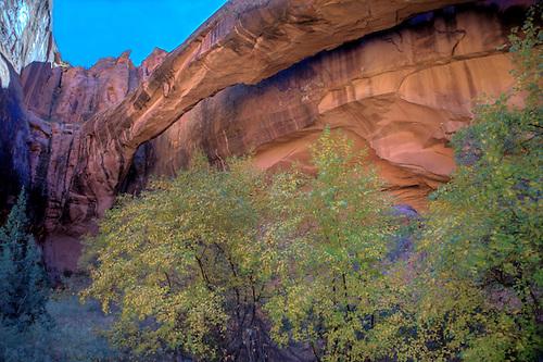 Morning Glory Natural Bridge at Negro Bill Canyon, Moab, Utah