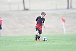 Germantown Legends Black vs. Collierville Lobos Rush Elite in the John Talley Shootout at Mike Rose Soccer Complex in Memphis, Tenn. on Friday, March 24, 2017. The Germantown Legends Black won 1-0.