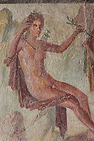 Apollo with a laurel branch, from a fresco of Apollo and Daphne, on the South wall of a small room off the atrium of the Casa dell Efebo, or House of the Ephebus, Pompeii, Italy. The fresco is in the Fourth Style of Roman wall painting, 60-79 AD, a complex narrative style. This is a large, sumptuously decorated house probably owned by a rich family, and named after the statue of the Ephebus found here. Pompeii is a Roman town which was destroyed and buried under 4-6 m of volcanic ash in the eruption of Mount Vesuvius in 79 AD. Buildings and artefacts were preserved in the ash and have been excavated and restored. Pompeii is listed as a UNESCO World Heritage Site. Picture by Manuel Cohen