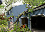 CHESHIRE, CT. 16 May 2018-051618BS89 - Hector Coutino watches from the roof as fellow worker Dave Behlman of Hillview Property Maintenance of Naugatuck uses a chainsaw to remove a tree during the clean-up of yesterday's strong storms on Sorghum Mill Drive in Cheshire on Wednesday afternoon. Bill Shettle Republican-American