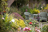 Sitting area in colorful cottage garden. Sally Robertson Garden.