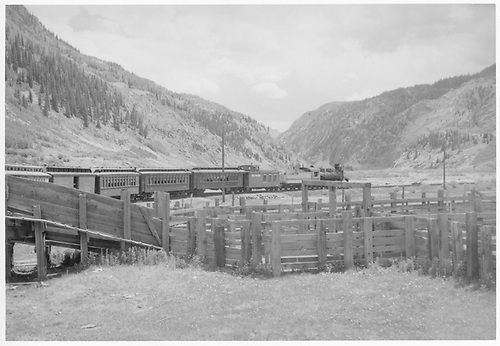 Northbound D&amp;RGW Silverton train with #473 in Grande Gold with caboose, three coaches, 1 baggage car, 1 coach (gold/black &amp; silver paint) plus more.<br /> D&amp;RGW  near Silverton, CO  1950