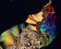 CITRIC ACID CRYSTALS<br /> Monohydrate C6H807 - 75x mag  liquefied &amp; recrystallized under polarized light