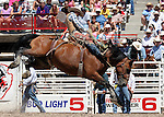 Justin Flundra Saddle Bron riding at Cheyenne Frontier Days