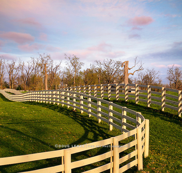 A Fence Line And Green Grass In The Morning During Springtime In Horse Country, Lexington, Kentucky, USA