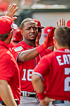 24 February 2019: Washington Nationals top prospect outfielder Victor Robles returns to the dugout after scoring in a Spring Training game against the St. Louis Cardinals at Roger Dean Stadium in Jupiter, Florida. The Nationals defeated the Cardinals 12-2 in Grapefruit League play. Mandatory Credit: Ed Wolfstein Photo *** RAW (NEF) Image File Available ***
