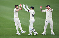29th November 2019, Hamilton, New Zealand;  England's Chris Woakes and team mates celebate the wicket of Taylor during play on day 1 of the 2nd international cricket test match between New Zealand and England at Seddon Park, Hamilton, New Zealand. Friday 29 November 2019