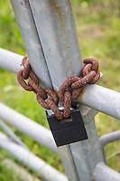 Padlock and chain on a farm gate